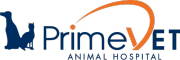 Veterinary Services Orange Park | PrimeVET